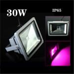 Светильник полно-спектральный 30Вт IP65